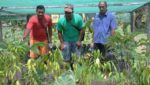 """Solomon Islands Residents See """"The Power of We"""""""
