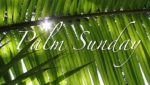 Palm Sunday:  A Crime of Passion