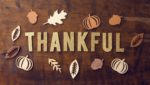 Thankful – Today and Everyday