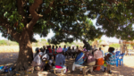 Under the Mango Tree: A Savings Group is Born