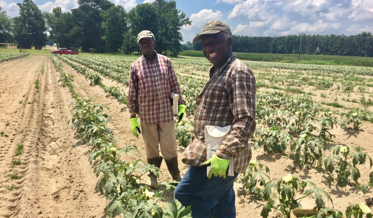 Trabajadorxs agrícolas en un campo, de la página de Facebook del Ministerio Episcopal de Trabajadorxs Agrícolas (EFWM, por sus siglas en inglés).